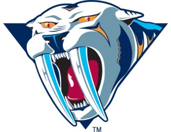 Back to the drawing board: worst logos in NHL history   Rich ...