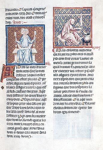 Breviari d'Amor, Yates Thompson 31, f. 73 January and February