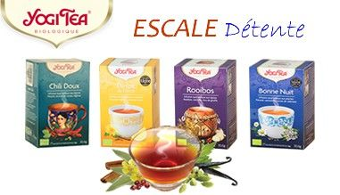 Yogi Tea Collection Maroc