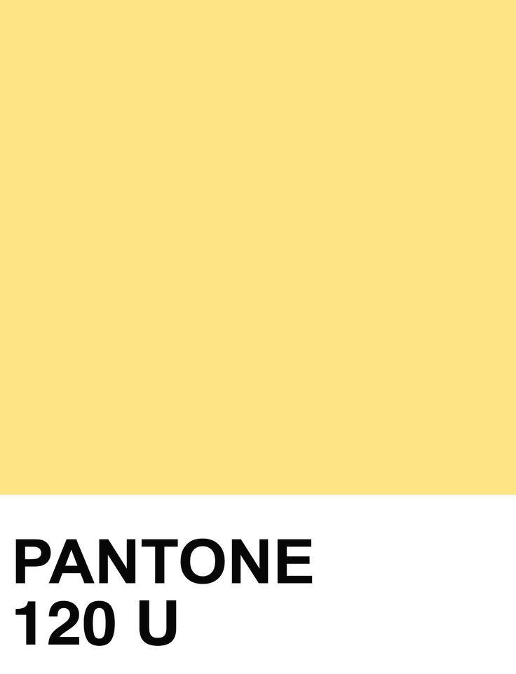 PANTONE SOLID UNCOATED: Photo