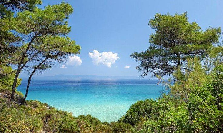 Des eaux saphir, des plages interminables et un vaste littoral de pins qui atteignent la mer