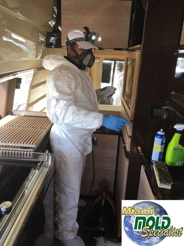 how to become mold remediation specialist
