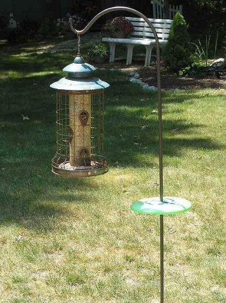 squirrel proof bird feeder what about those chipmunks, outdoor living, pets animals, To keep chipmunks from climbing up your shepherd s hook to get to the goodies just drill a hole in the center of a Frisbee 97 cents at Walmart Wrap some duct tape where you want it to sit so it doesn t slide down to the ground