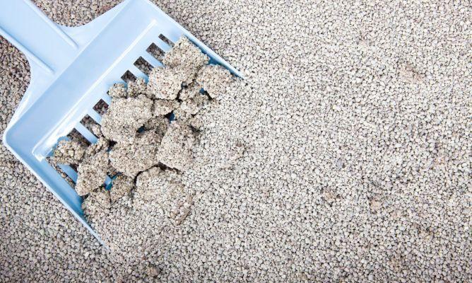 Arena para gatos:  Triturar papeles de periódico. Mojar con agua tibia y añadir un poco de detergente biodegradable, dejando en remojo para que vaya adquiriendo consistencia. Escurrir, volver a empapar, pero ahora solo con agua tibia sin detergente, volviendo a escurrir con el colador. Añadir bicarbonato y amasar la mezcla con las manos protegidas con guantes escurriendo el agua al máximo. Para que se endurezca la mezcla se deja secar durante un día sobre una bandeja o superficie plana.