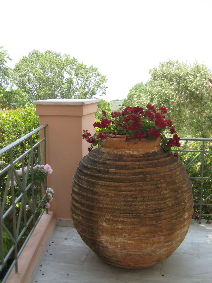 A very large terracotta olive oil jar used as a pot. #Olive_oil_jar, #old, #flowerpot, #garden