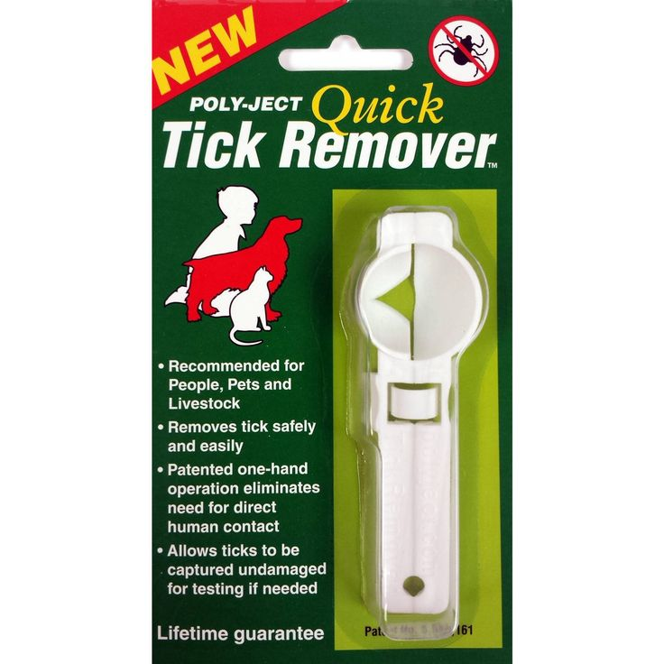 25 Best Ideas About Tick Removal Dog On Pinterest Tick