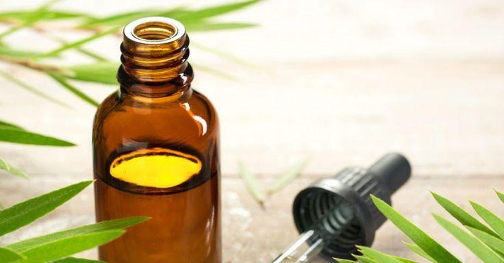 Par quels médicaments traiter vite le microorganisme végétal