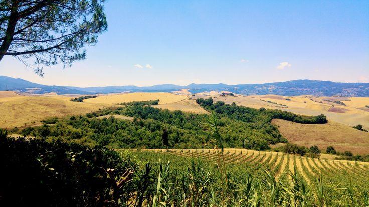 I am never fed up of these views in Tuscany...I am lucky to be born here  . . . . #wishversilia #tuscany #travel #travelpics #instatravel #instavacation #ilovetravel #italygram #tuscanygram #italyphoto #visit_tuscany #visittuscany #tuscanybuzz #instatuscany #italyiloveyou #postcardfromtheworld #traveling #vacation #visiting #instago #instagood #trip #holiday #photooftheday #instapassport #instatraveling #mytravelintuscany #travelgram #travelingram #igtravel