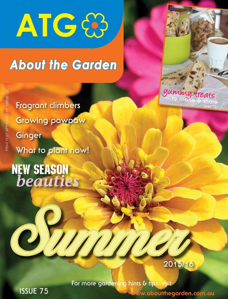 About the garden summer magazine 2015 16  For all the latest new release plants available now at garden centres and great information on gardening and growing plants this summer.