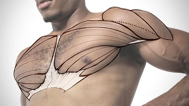 Tip: The Best Chest Exercise You've Never Tried