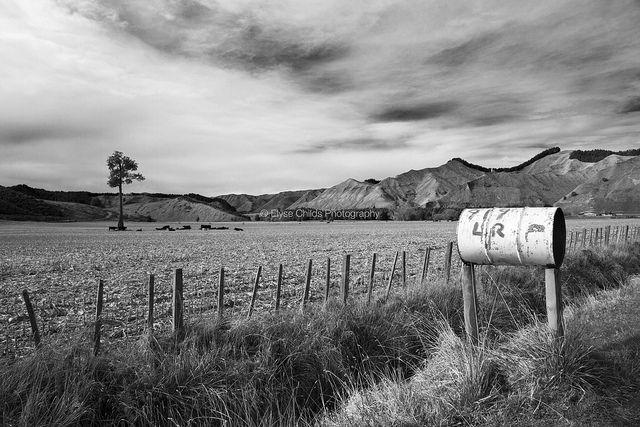 Whakaihuwaka, Whanganui River   © Elyse Childs Photography