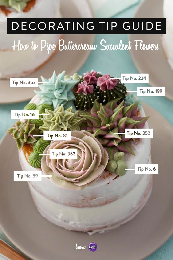 Here's a decorating tip guide to piping buttercream succulent flowers! Learn how to use the decorating tips in your collection to create amazing blooming succulents. Great for tea parties, birthdays, bridal showers and weddings, these stunning mini cakes are a great way to showcase your decorating skills. Mix and match succulent styles and colors to create the edible garden of your dreams!