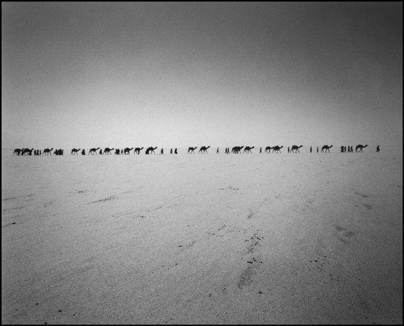 Camels in Niger, 1989 - (c) Raymond Depardon