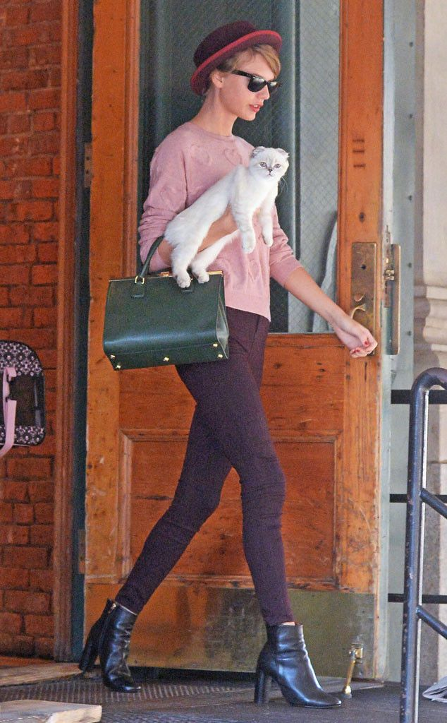 Taylor Swift kicks fall off with this adorable autumn fashion! Plus, she has a super cute accessory, her kitty Olivia Benson!