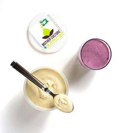76 best mother culture images on pinterest culture yogurt and yogurt exchange san antonio magazine may 2016 san antonio tx publicscrutiny Image collections