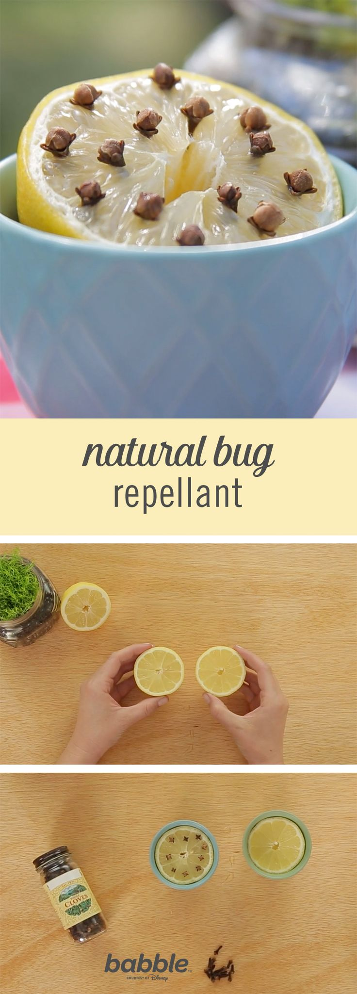 This DIY Natural Bug Repellant will keep you and your food bug-free. You will now be able to enjoy an outdoor meal without a fuss. Grab some lemon and cloves to create this simple summer hack!