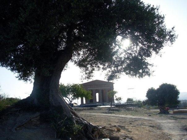 Tempio della Concordia, Agrigento -photo of my friend, Vale-