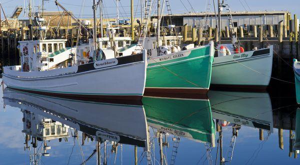 Top 10 Breathtaking Bay of Fundy Instagrams //  Grand Manan Island, New Brunswick Canada