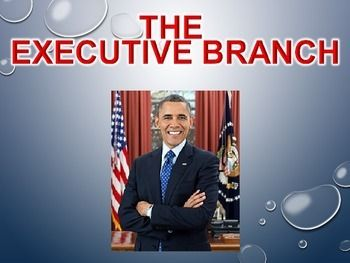 Brief Yet Effective Presentation Capturing the Qualifications and Various Roles of the Office of U.S. President.