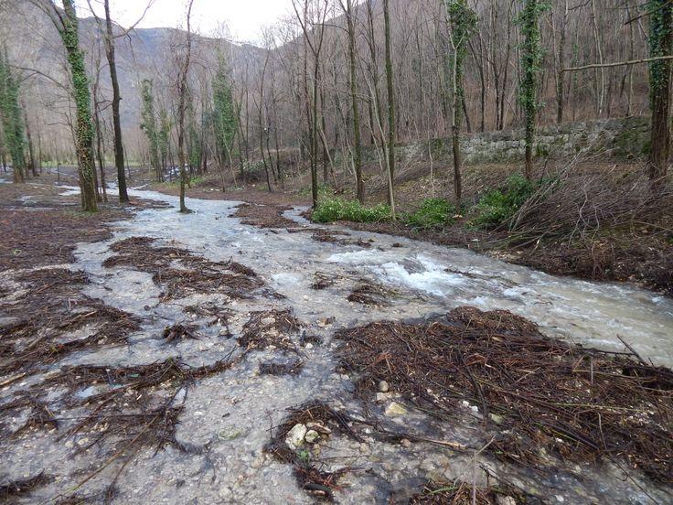 Il torrente scende a Semonzo