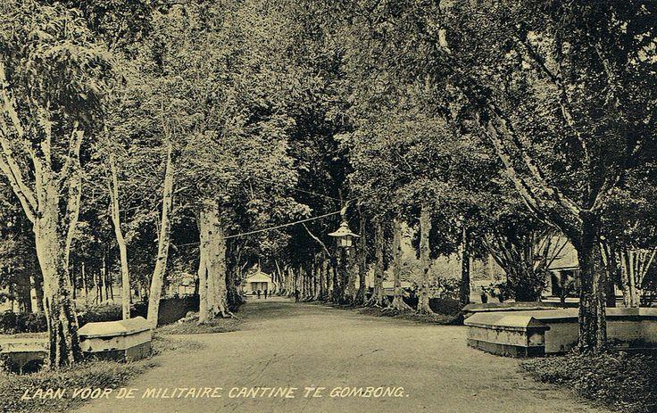 Tempo Doeloe #69 - Gombong, Jalan ke Kantin Militer, 1912