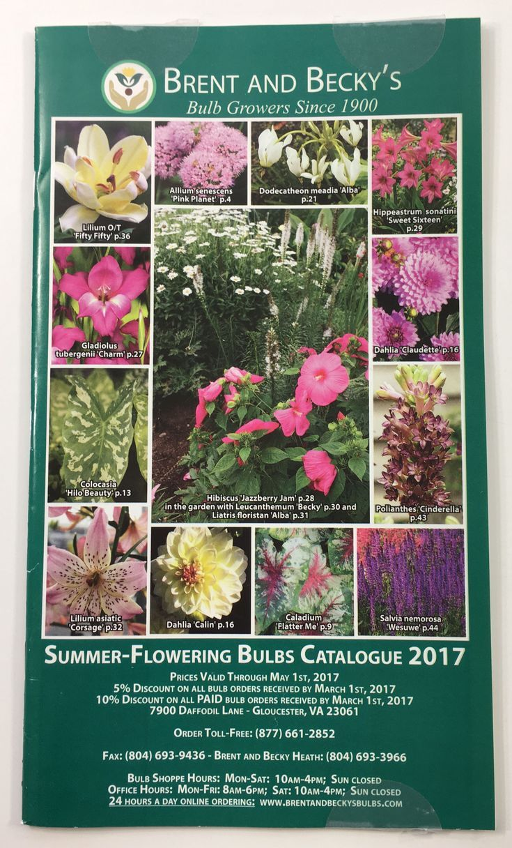 Get Free Seed Catalogs And Plant Catalogs For Your Garden