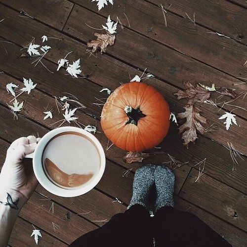 ℱaℓℓ ❤ | fall mornings | fall and coffee | pumpkins and leaves