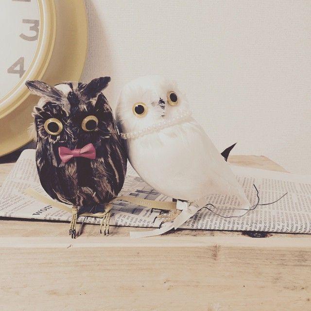 2015.4.25 ウェルカムドールはフクロウにこれはネット検索しまくってた時に出てきて、白のフクロウは持っていたから茶色のをお迎えしで蝶ネクタイをつけました♡ #wedding #ウェルカムドール#フクロウ#TANEandAIKOwedding#プレ花嫁