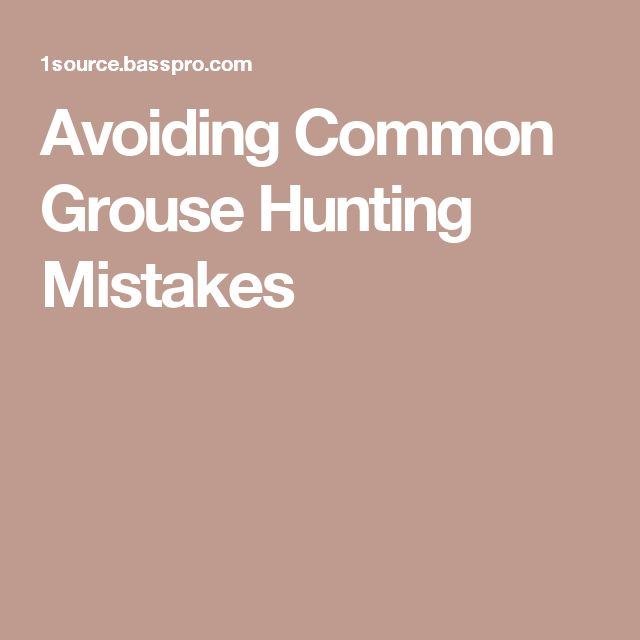 Avoiding Common Grouse Hunting Mistakes