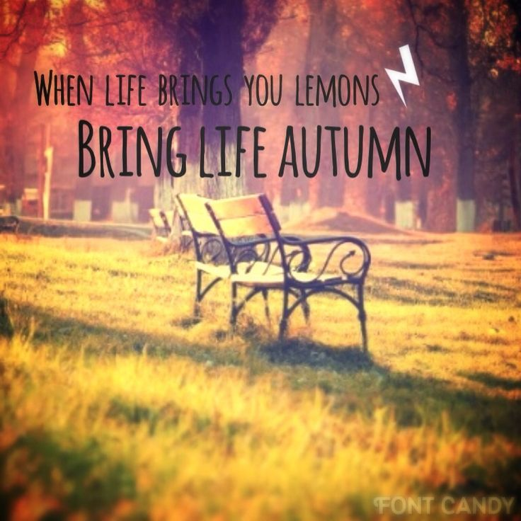 When life brings you lemons, bring life Autumn This is something funny that I made up  By @Stefani Demi