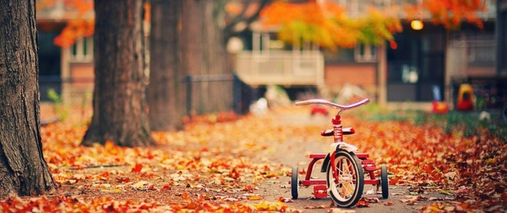 With my new (old) tricycle!: Autumn Scene, Autumn Pictures, Bicycles Photography, Bike Riding, Autumn Leaves, Autumn Wallpapers, Photo Wallpapers, Fallen Leaves, Autumn Photography