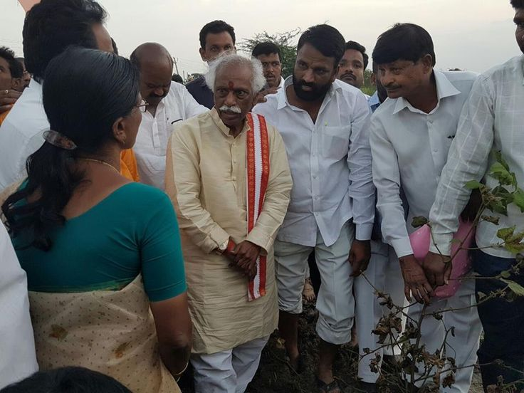 Inspected the damaged crops due to heavy rains, along with Medak RDO Shri. Nagesh and other Medak District Officials at Hathnoora Mandal, Medak District, Telangana.