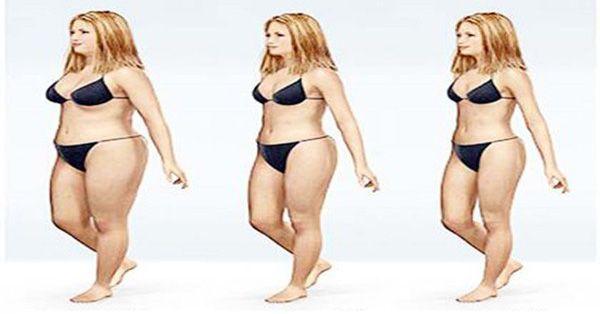 La marche est l'exercice le plus simple à faire et le moins contraignant. Il vous permet de perdre 500 gpar semaine ou plus, selon la fréquence de la marche. Sans faire de régime ni vous abonner à la salle de gym vous pourrez perdre jusqu'à10 kilosen 5 mois. La marche tonifiera vos muscles, améliorera votre …