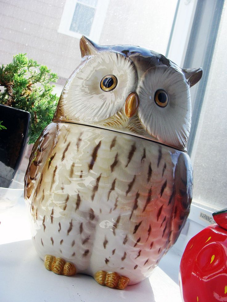 owl cookie jar -- want this!!!