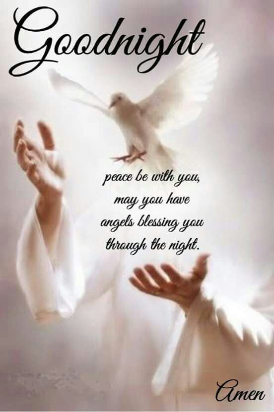 Good Nightj Afternoon Night Good Night Blessings Blessed