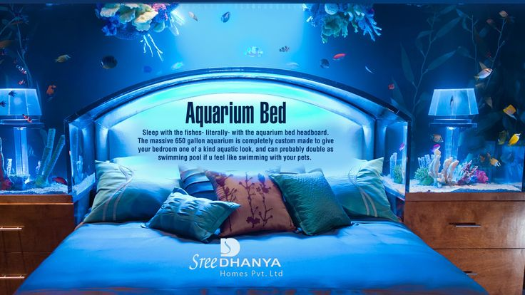 #AquariumBed - Lets Sleep with the Fishes.
