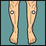 Diarrhea Acupressure » PointFinder » Mobile Enabled