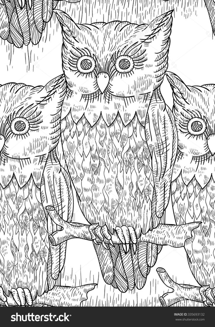 17 Best Images About Owl Coloring Pages For Adults On