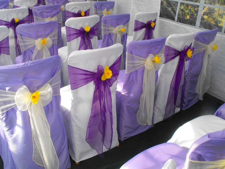 Alternating Lilac and White Chair Covers with Alternating Cadburys Purple and Lemon Organza Sashes with Daffodils