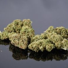 Shamani Pie is a 1:1 CBD strain that is a mix of Shaman and Cherry Pie. Shaman is a sativa-dominant strain bred from Purple #1 and Skunk, while Cherry Pie's parents are Granddaddy Purple and Durban Poison.
