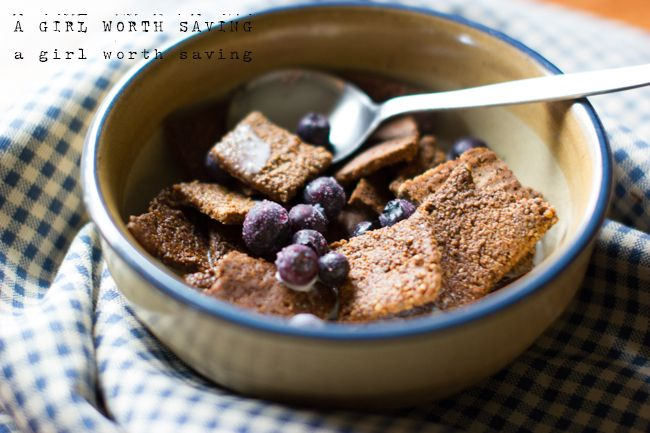 KEEPER -- *THIS ONE*: paleo cinnamon crunch cereal (grain-free, nut-free) //  delicious! our new favorite breakfast cereal //  1 cup of coconut shreds     ½ cup of sunflower seeds     ¼ cup of chia seeds     1 tbsp of cinnamon     ¼ tsp of sea salt     ¼ cup of maple syrup     1 egg // 8 servings (~1/2 C ea). Net carbs: total recipe = 73g; 1/8 recipe = 9.125g