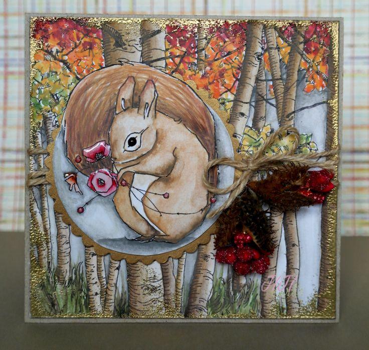JIJI Cards - Squirrel