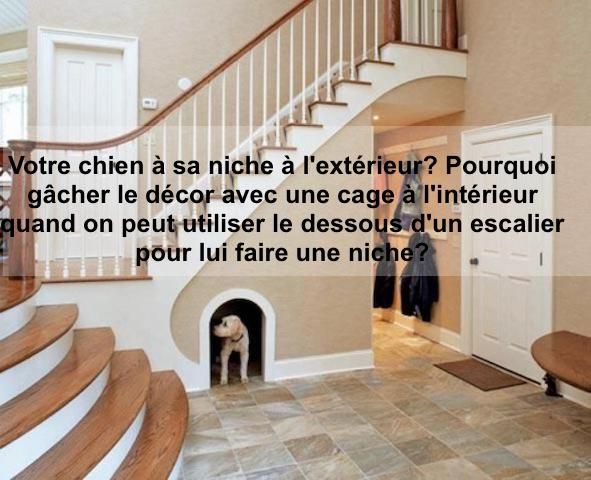 1000 images about on - Plan de construction niche pour chien ...