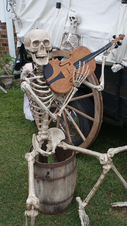 934 best Skeletons images on Pinterest