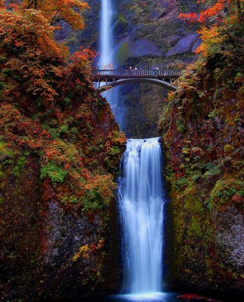 Multnomah Falls, Oregon, United States of America I have been on that bridge and looking up or down in quite the view!