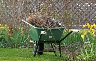Grib trillebøren og ryd op i havens bede, så de bliver klar til foråret.