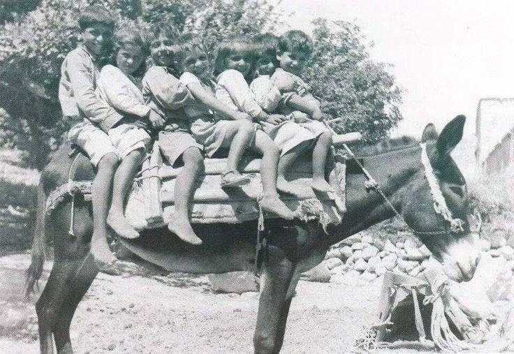 Donkey Power. Greece, photographer unknown