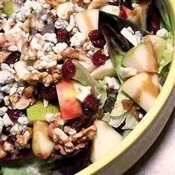 Apfel-Cranberry Salat - Dieser Salat schmeckt lecker als Beilage oder wenn man ihn mit Hähnchenbrust kombiniert wird daraus ein ganzes Gericht. Man kann auch Endivien oder Radicchiosalat anstelle von Blattsalat hernehmen.@ de.allrecipes.com