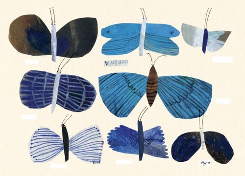 Emma Lewis: Moths. Easy to draw! Curved and straight lines. I think I'll use different shades of the same color, also.