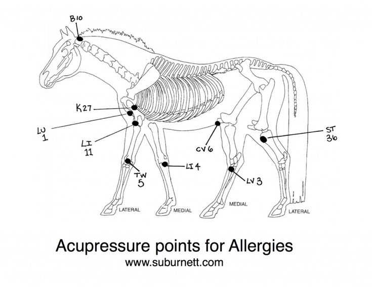 Acupressure Points for Allergies